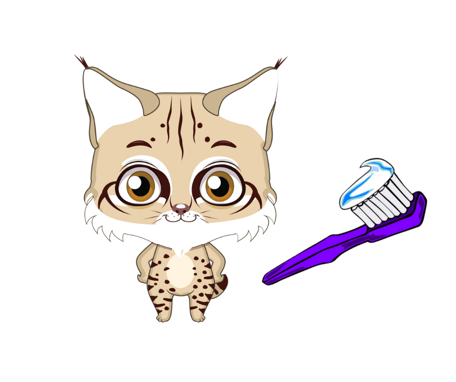 Blitz Bobcat with toothbrush